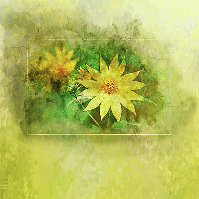 Painting - Yellow Daisy Watercolor by Christina VanGinkel