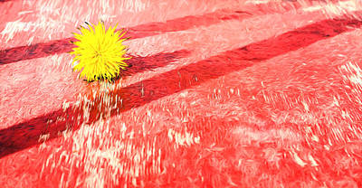 Photograph - Yellow Dandelion On Red Oil Painting Fusion by John Williams