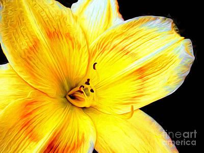 Photograph - Yellow Daylily Flower by Vizual Studio