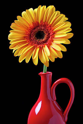 Yellow Fancy Daisy In Red Vase Art Print by Garry Gay