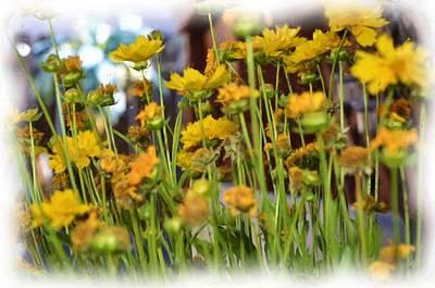 Digital Art - Yellow Fields by Richard Ricci