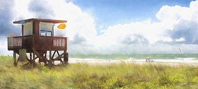 Yellow Flag, Santa Maria Island, Florida Art Print