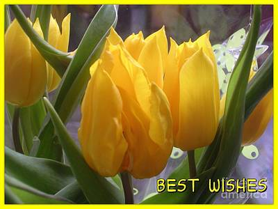 Photograph - Yellow Flame Tulips Greetings by Joan-Violet Stretch