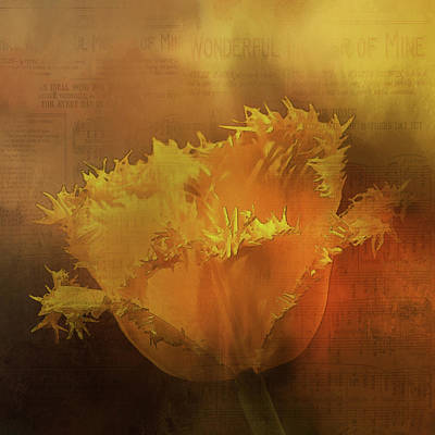 Digital Art - Yellow Flower by Richard Ricci
