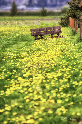 Photograph - Yellow Flower Wagon  by Charlie Duncan