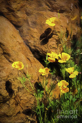 Photograph - Yellow Flowers And Rock by Jon Burch Photography