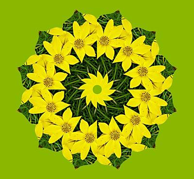 Digital Art - Yellow Flowers by Cecilia Swatton