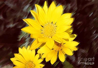 Photograph - Yellow Flowers by Milena Ilieva
