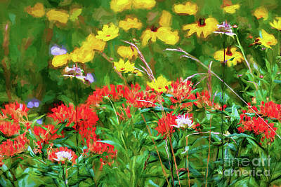 Digital Art - Yellow Flowers Red Flowers In The Blue Ridge Ap by Dan Carmichael
