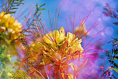 Photograph - Yellow Flowers by Tatiana Travelways