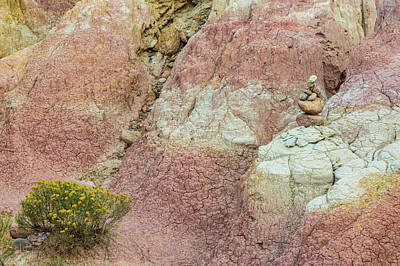 Photograph - Yellow Flowers - Texture And Stacked Balanced Rocks by James BO Insogna