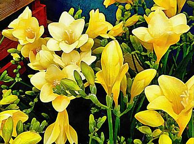 Photograph - Yellow Freesia Cluster by Dorothy Berry-Lound