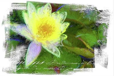 Photograph - Yellow French Textured Waterlilly by Alice Gipson