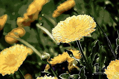 Photograph - Yellow Garden by Erica Hanel