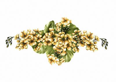 Digital Art - Yellow Geraniums On White by Georgiana Romanovna