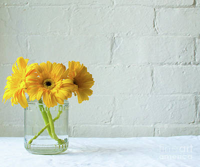 Photograph - Yellow gerberas in glass jar by Natalie Board