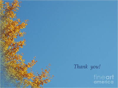 Photograph - Yellow Ginkgothank You Greeting Card by Eena Bo