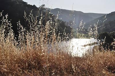 Photograph - Yellow Grass Lake View by Matt Harang