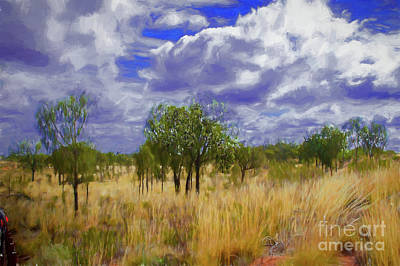 Photograph - Yellow Grass Outback by Rick Bragan