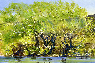 Willow Trees Painting - Yellow Green Willow Trees by Sharon Freeman
