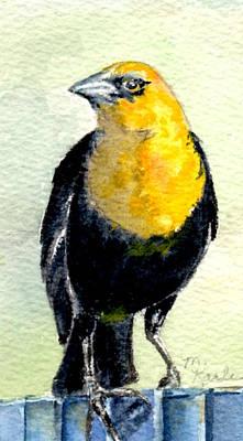 Painting - Yellow-headed Blackbird by Marsha Karle