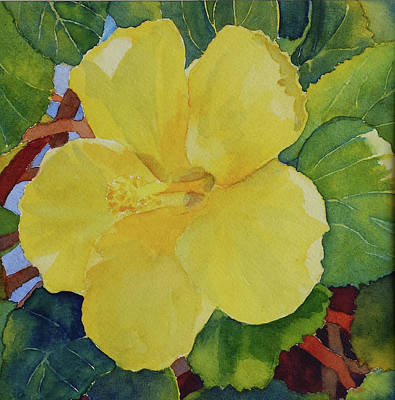 Painting - Yellow Hibiscus by Judy Mercer