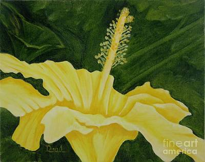Yellow Hibiscus Opening To The Morning Original