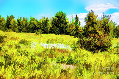 Digital Art - Yellow Hill by Rick Bragan