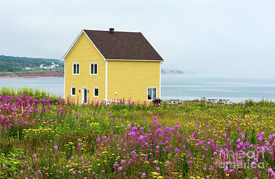 Photograph - Yellow House And Fireweed Flowers by Les Palenik