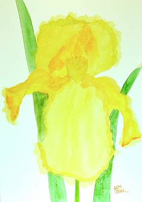 Painting - Yellow Iris   by Barrie Stark