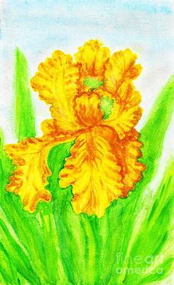 Painting - Yellow Iris, Painting by Irina Afonskaya
