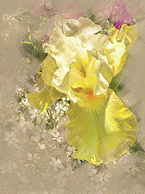 Digital Art - Yellow Iris by Mark Mille