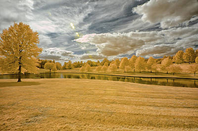 Creve Coeur Park Photograph - Yellow Is In The Air by Allen Skinner