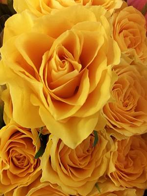 Photograph - Yellow Joy by Rosita Larsson