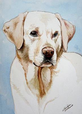 Painting - Yellow Lab by Christopher Shellhammer