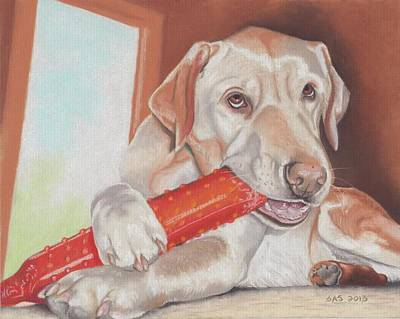 Pastel - Yellow Labrador by Sherri Strikwerda