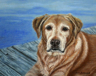 yellow Labrador Art Print by Sun Sohovich
