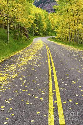 Photograph - Yellow Leaf Road Near Aspen Co by Tibor Vari