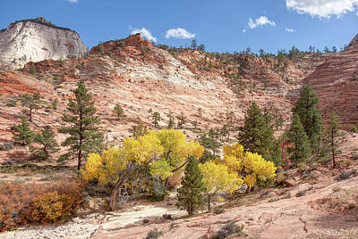 Photograph - Yellow Leaves And Red Stone by John M Bailey