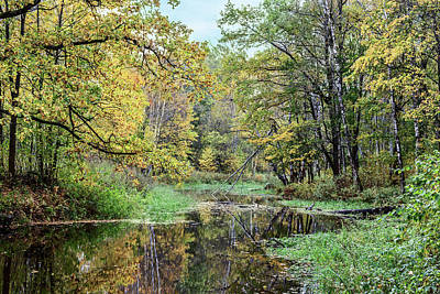 Photograph - Yellow Leaves Beautiful Autumn Forest Reflected In The Calm Water Of The Forest River by George Westermak