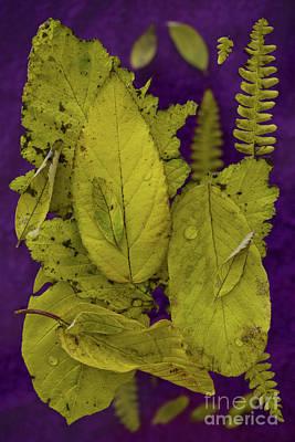 Yellow Leaves Art Print by Masako Metz