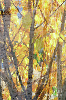 Digital Art - Yellow Leaves Wash by Donna L Munro