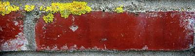 Photograph - Yellow Lichen Red Brick by Jerry Sodorff