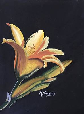 Pastel - Yellow Lilly by Michele Turney