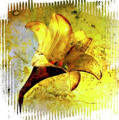 Yellow Lily Print by Bernard Jaubert