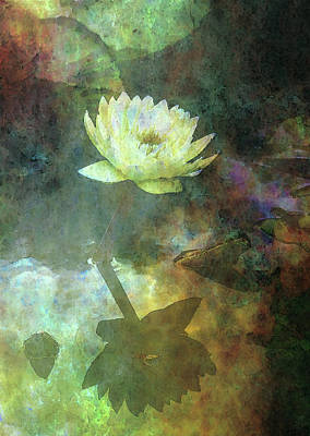 Photograph - Yellow Lotus Impression 4722 Idp_2 by Steven Ward