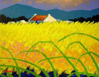 Irish Painting - yellow Meadow Ireland by John  Nolan