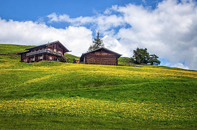 Photograph - Yellow Meadows In Seiser Alm by Carolyn Derstine