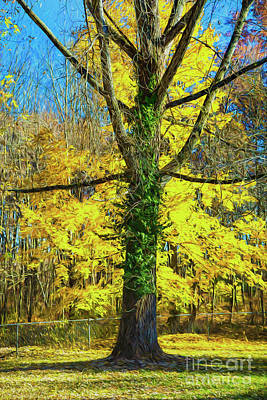 Photograph - Yellow Montage by Rick Bragan