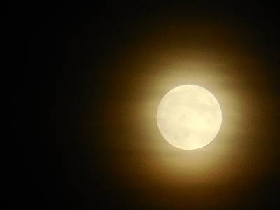 Photograph - Yellow Moon by Jacqueline Madden